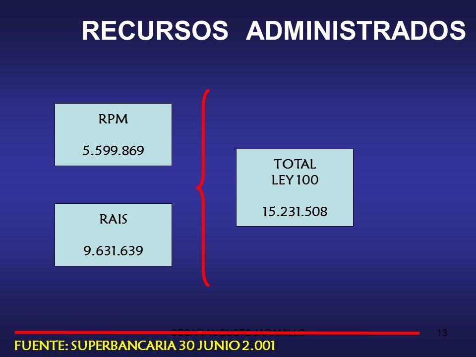 CESAR AUGUSTO JARAMILLO HOYOS 12 SISTEMA PENSIONAL PENSIONADOS 821.447 PENSIONADOS RPM 643.225 78% PENSIONADOS RAIS 7.646 1% PENSIONADOS EXCEPTUADOS 170.576 21% LEY 100 FUENTE: SUPERBANCARIA 30 JUNIO 2.001