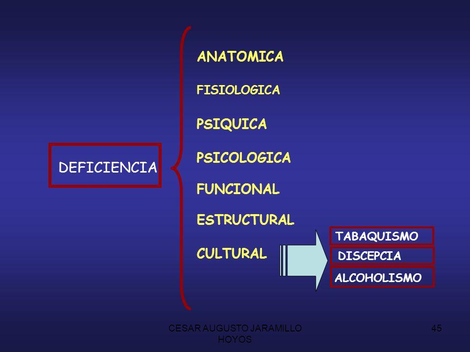 CESAR AUGUSTO JARAMILLO HOYOS 44 INVALIDEZ TIPOS FISICA PSIQUICA SENSORIAL AREAS CLINICA SEGURIDADSOCIAL MERCADOLABORAL CAPACIDADLABORAL 50% o más DIAGNOSTICOTRATAMIENTODEFICIENCIADISCAPACIDAD MINUSVALIASEVERAGRAVE LEVE TRANSITORIA- DEFINITIVA REVERSIBLE - IRREVERSIBLE PROGRESIVA - REGRESIVA DEFICIENCIADISCAPACIDAD MINUSVALIA SEVERAGRAVE LEVE TRANSITORIA- DEFINITIVA REVERSIBLE - IRREVERSIBLE PROGRESIVA - REGRESIVA