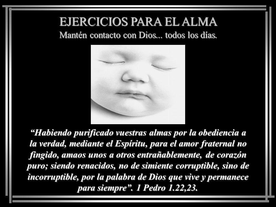 EJERCICIOS PARA EL ALMA Mantén contacto con Dios... todos los días. Oh hombre, él te ha declarado lo que es bueno, y qué pide Jehová de ti: solamente