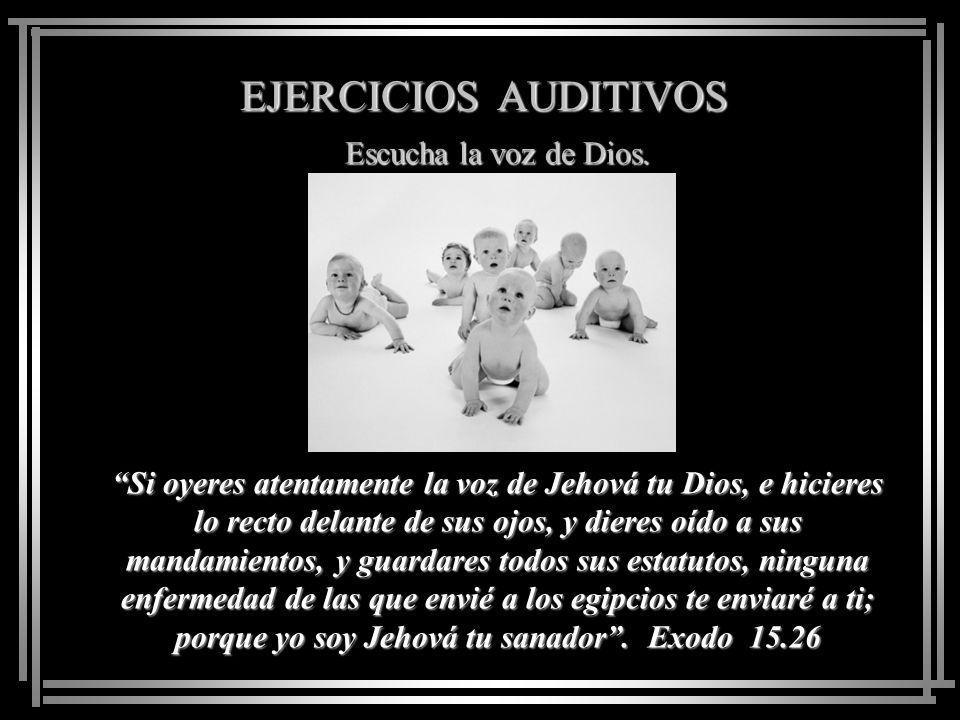 EJERCICIOS AUDITIVOS Escucha la voz de Dios. Mis ovejas escuchan mi voz, y yo las conozco, y ellas me siguen. Juan 10.27.