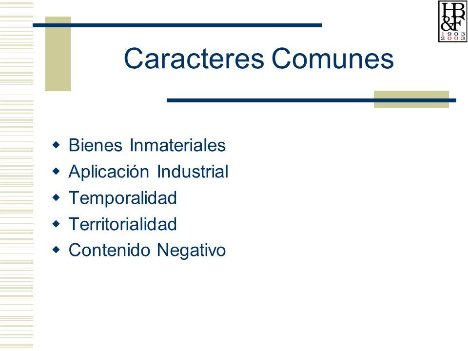 Caracteres Comunes Bienes Inmateriales Aplicación Industrial Temporalidad Territorialidad Contenido Negativo