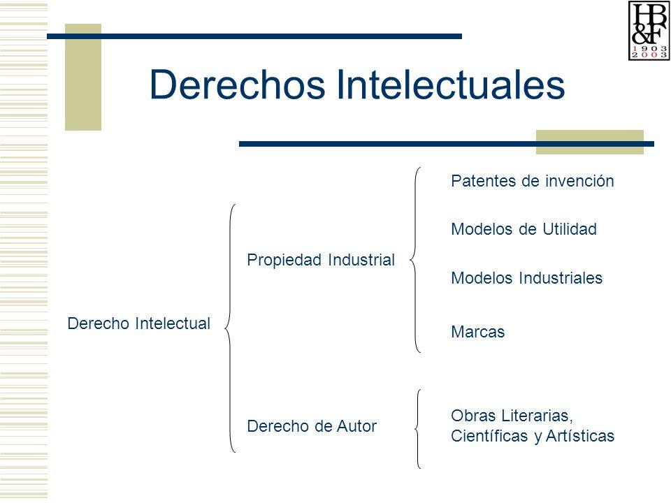 Derecho Intelectual Propiedad Industrial Patentes de invención Modelos de Utilidad Modelos Industriales Marcas Derecho de Autor Obras Literarias, Científicas y Artísticas Derechos Intelectuales