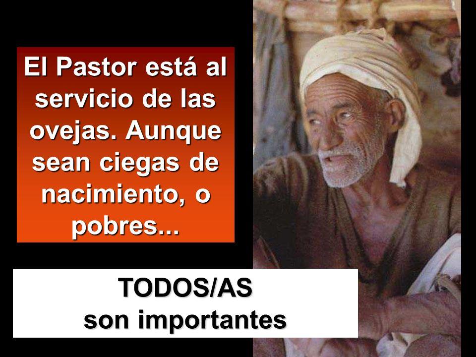 El Pastor está al servicio de las ovejas.Aunque sean ciegas de nacimiento, o pobres...