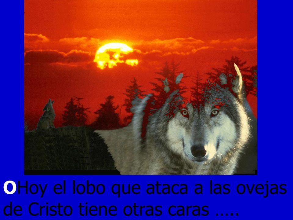 OHoy el lobo que ataca a las ovejas de Cristo tiene otras caras …..