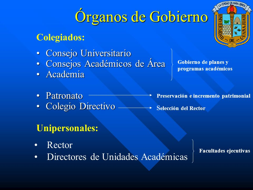La Academia y la Ley Orgánica Artículo 24.