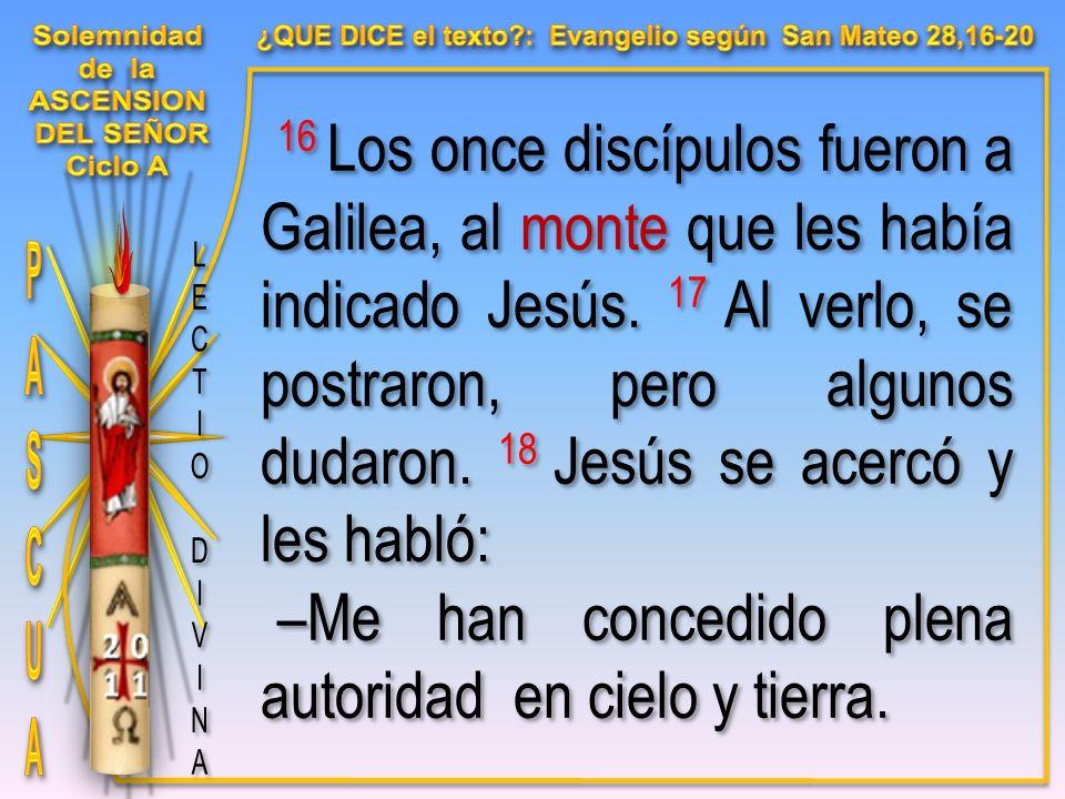 16 Los once discípulos fueron a Galilea, al monte que les había indicado Jesús.