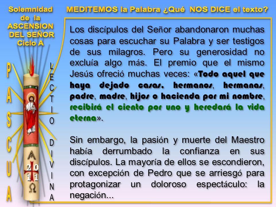 Los disc í pulos del Se ñ or abandonaron muchas cosas para escuchar su Palabra y ser testigos de sus milagros.