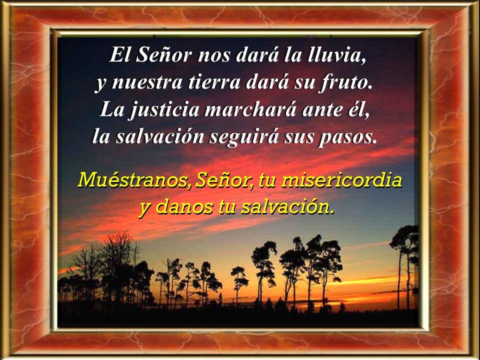Muéstranos, Señor, tu misericordia y danos tu salvación. La misericordia y la fidelidad se encuentran, la justicia y la paz se besan; la fidelidad bro