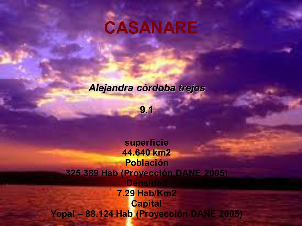 CASANARE Alejandra córdoba trejos 9.1 superficie 44.640 km2 Población 325.389 Hab (Proyección DANE 2005) Densidad 7.29 Hab/Km2 Capital Yopal – 88.124