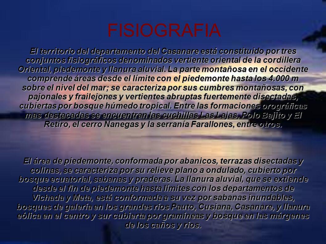FISIOGRAFIA El territorio del departamento del Casanare está constituido por tres conjuntos fisiográficos denominados vertiente oriental de la cordill