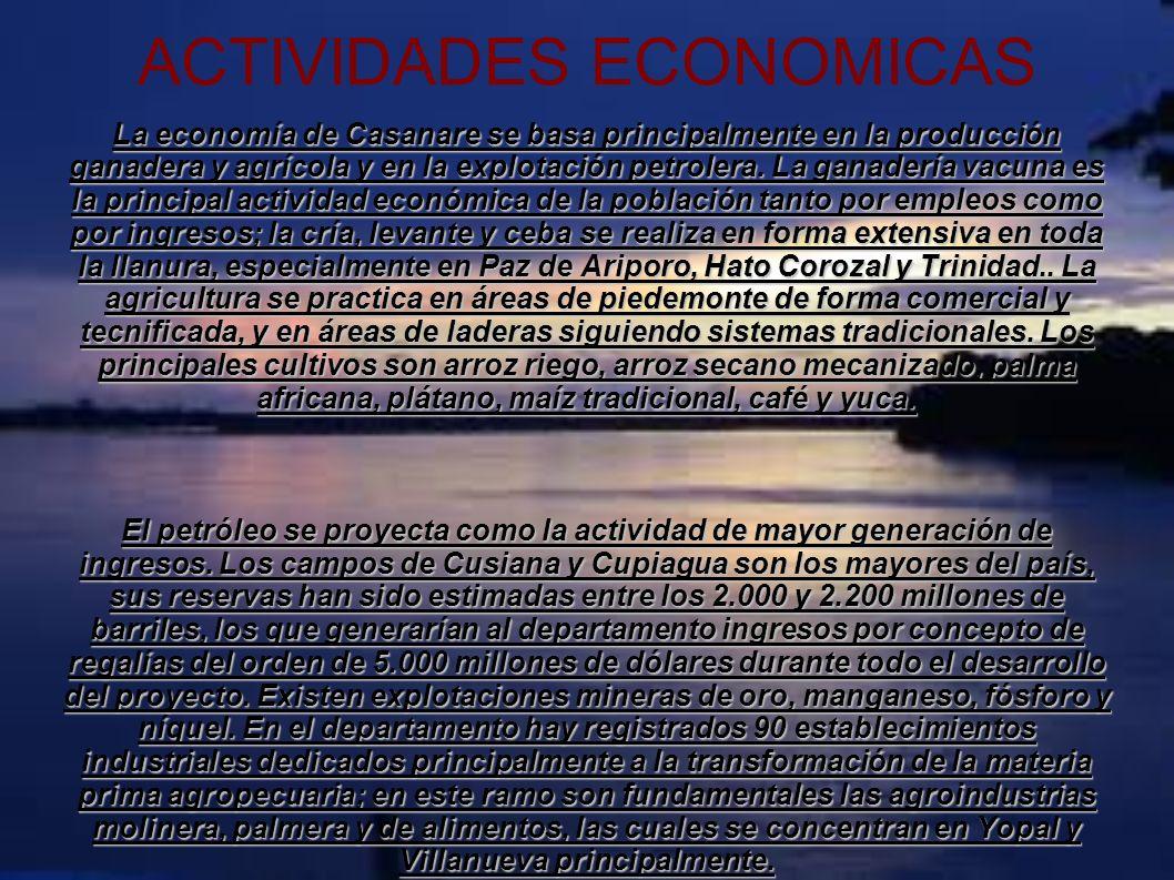 ACTIVIDADES ECONOMICAS La economía de Casanare se basa principalmente en la producción ganadera y agrícola y en la explotación petrolera. La ganadería