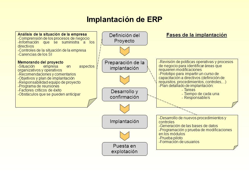 Implantación de ERP Análisis de la situación de la empresa -Comprensión de los procesos de negocio -Información que se suministra a los directivos -Co