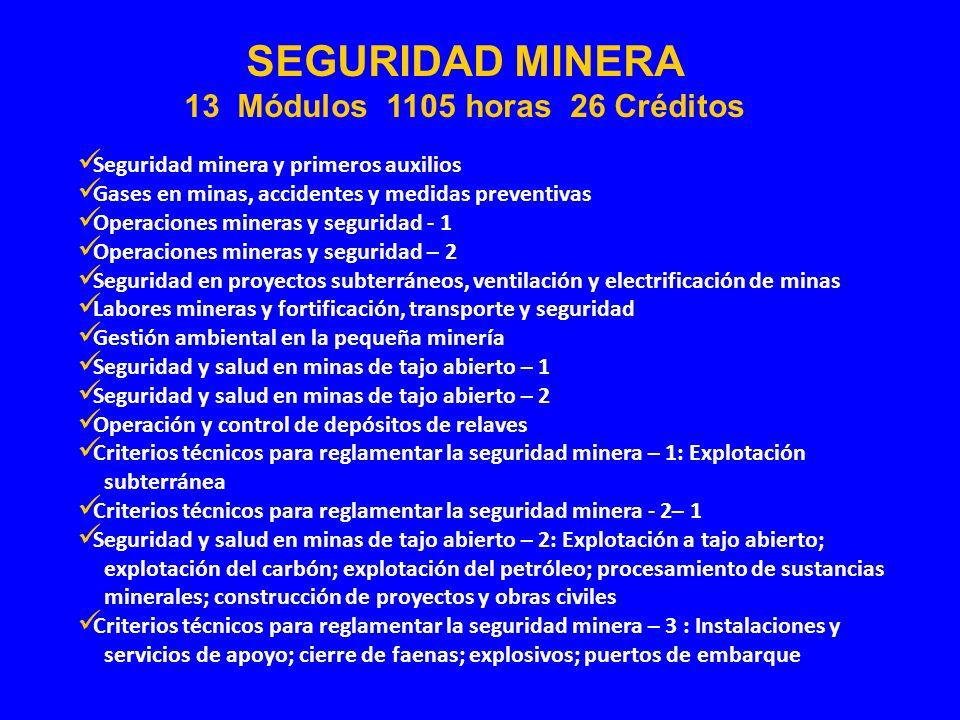 Seguridad minera y primeros auxilios Gases en minas, accidentes y medidas preventivas Operaciones mineras y seguridad - 1 Operaciones mineras y seguri