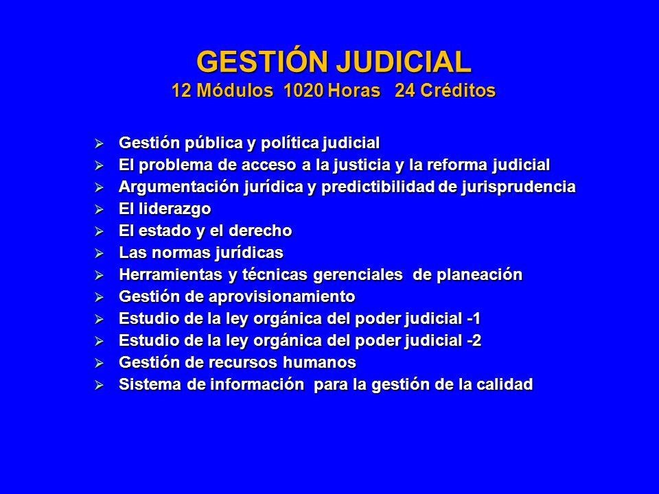 GESTIÓN JUDICIAL 12 Módulos 1020 Horas 24 Créditos Gestión pública y política judicial Gestión pública y política judicial El problema de acceso a la