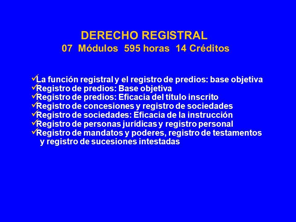 La función registral y el registro de predios: base objetiva Registro de predios: Base objetiva Registro de predios: Eficacia del título inscrito Regi