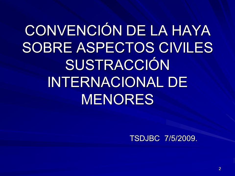 73 CONVENCIÓN SOBRE LOS ASPECTOS CIVILES DE LA SUSTRACCIÓN INTERNACIONAL DE MENORES.