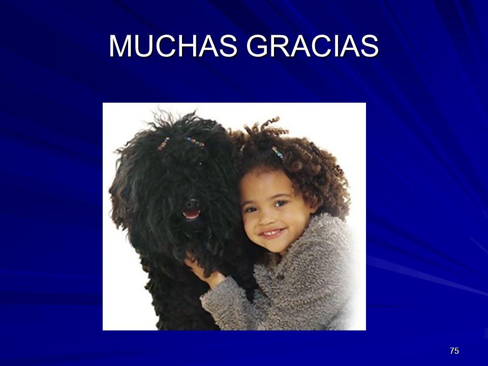 MUCHAS GRACIAS 75