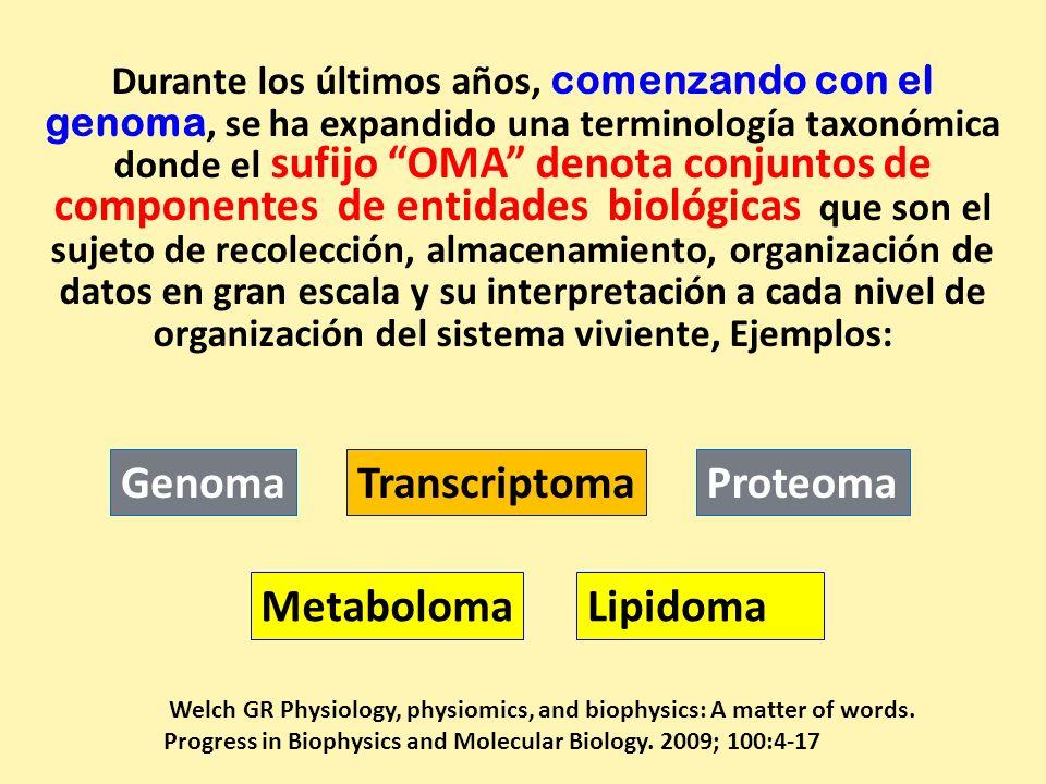 Durante los últimos años, comenzando con el genoma, se ha expandido una terminología taxonómica donde el sufijo OMA denota conjuntos de componentes de