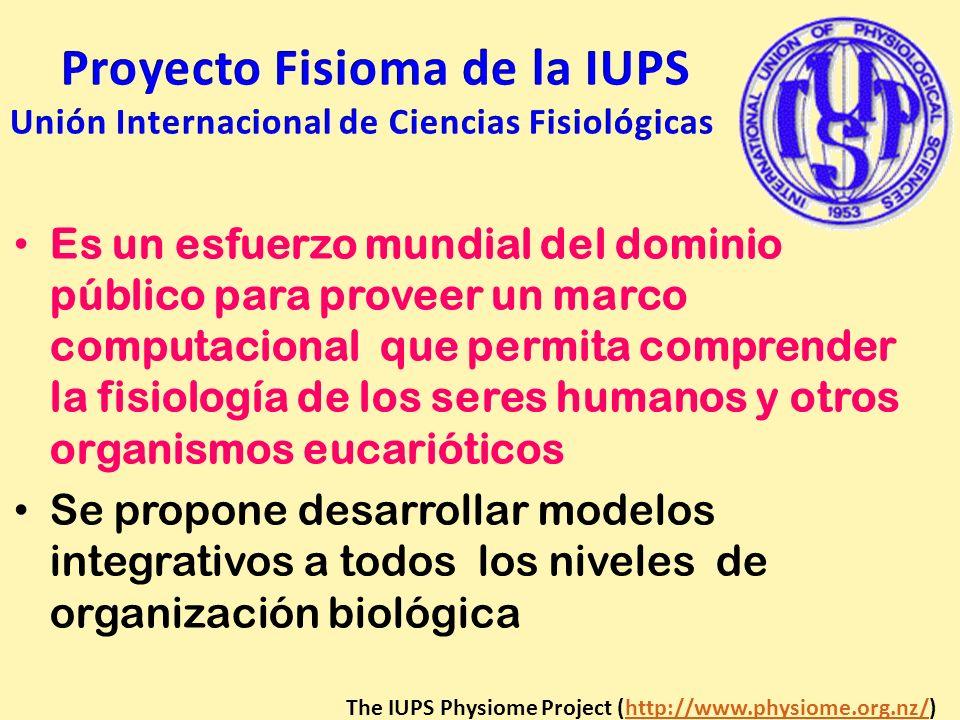 Es un esfuerzo mundial del dominio público para proveer un marco computacional que permita comprender la fisiología de los seres humanos y otros organ
