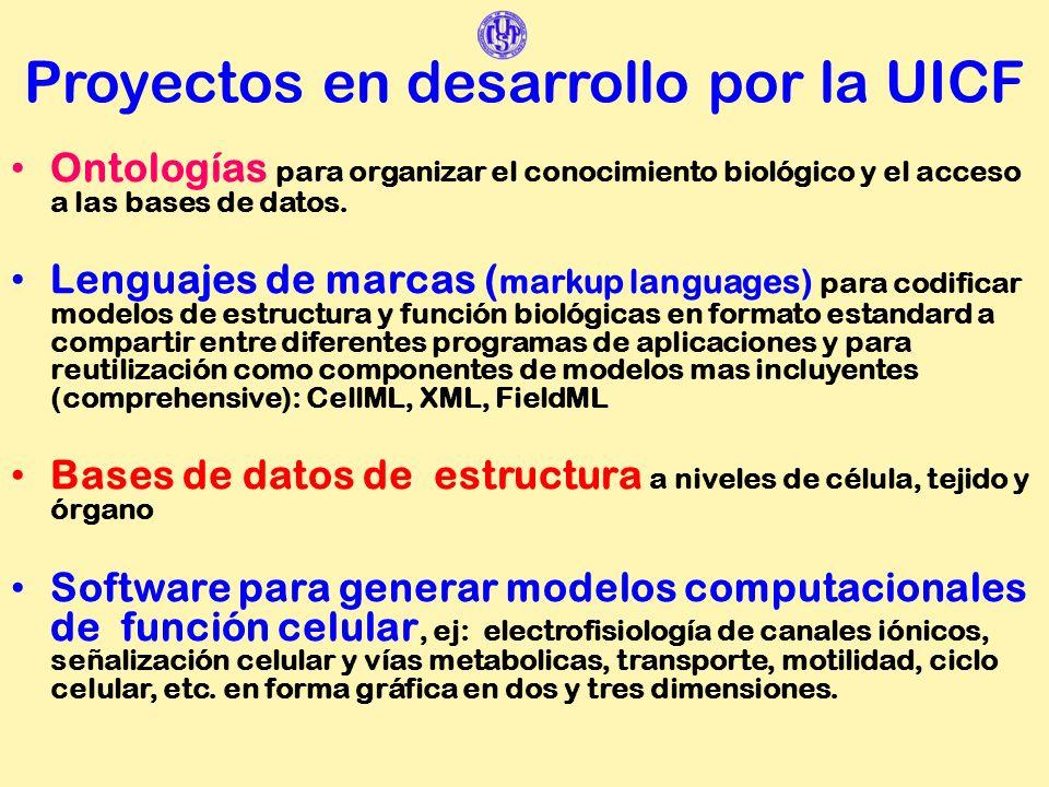 Proyectos en desarrollo por la UICF Ontologías para organizar el conocimiento biológico y el acceso a las bases de datos. Lenguajes de marcas ( markup