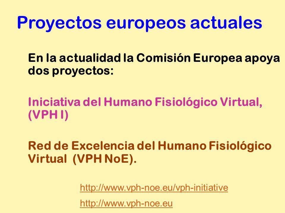 Proyectos europeos actuales En la actualidad la Comisión Europea apoya dos proyectos: Iniciativa del Humano Fisiológico Virtual, (VPH I) Red de Excele