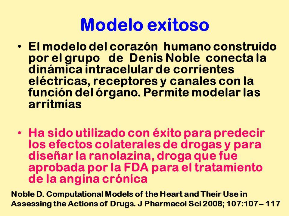 Modelo exitoso El modelo del corazón humano construido por el grupo de Denis Noble conecta la dinámica intracelular de corrientes eléctricas, receptor
