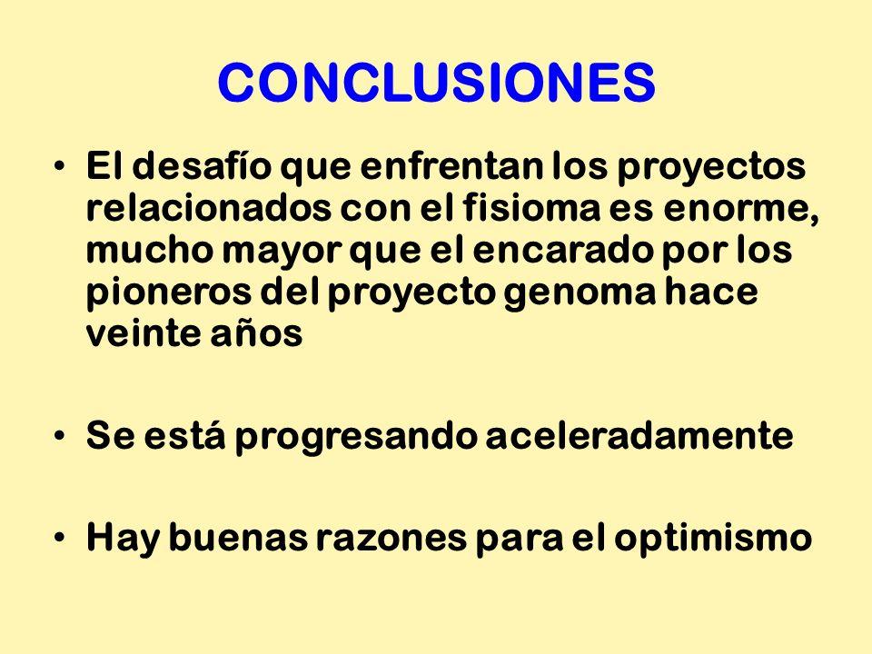 CONCLUSIONES El desafío que enfrentan los proyectos relacionados con el fisioma es enorme, mucho mayor que el encarado por los pioneros del proyecto g