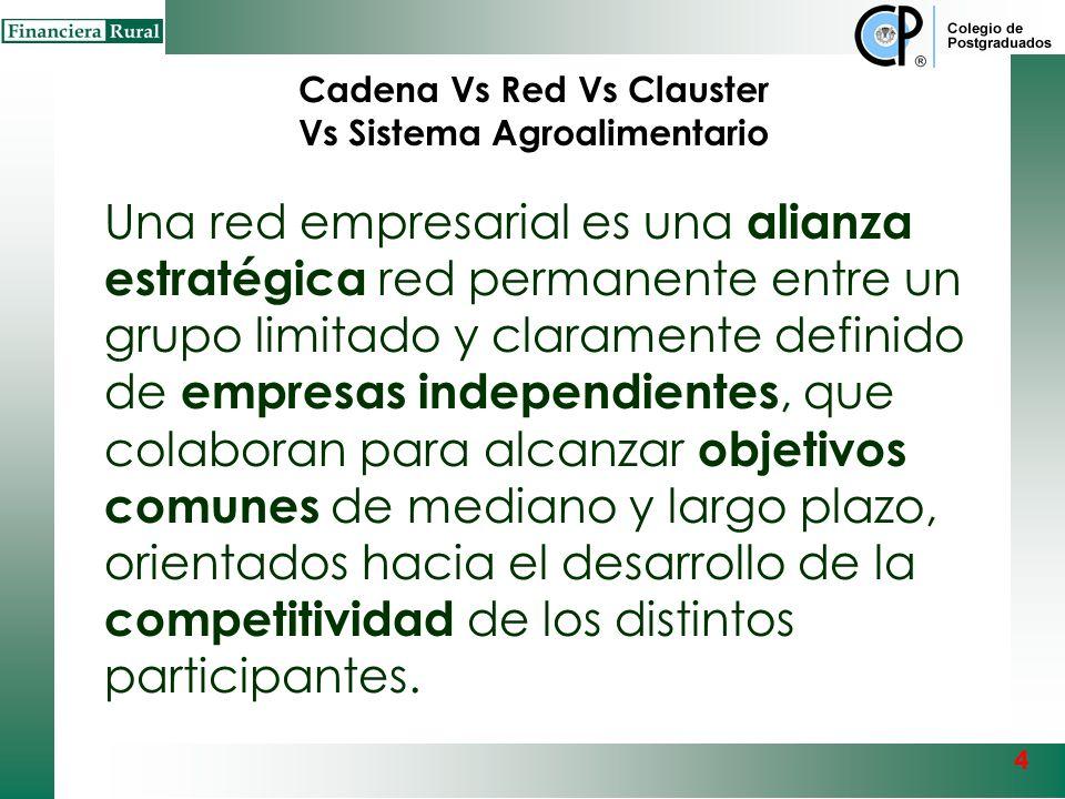 ¿Qué es un CLUSTER? Es un grupo integrado por empresas de una región (concentración geográfica de empresas) líderes en su ramo, apoyadas por otras que