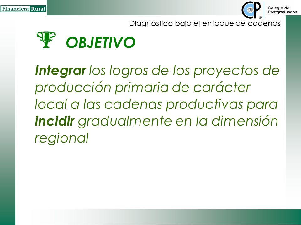 OBJETIVO Integrar los logros de los proyectos de producción primaria de carácter local a las cadenas productivas para incidir gradualmente en la dimensión regional Diagnóstico bajo el enfoque de cadenas