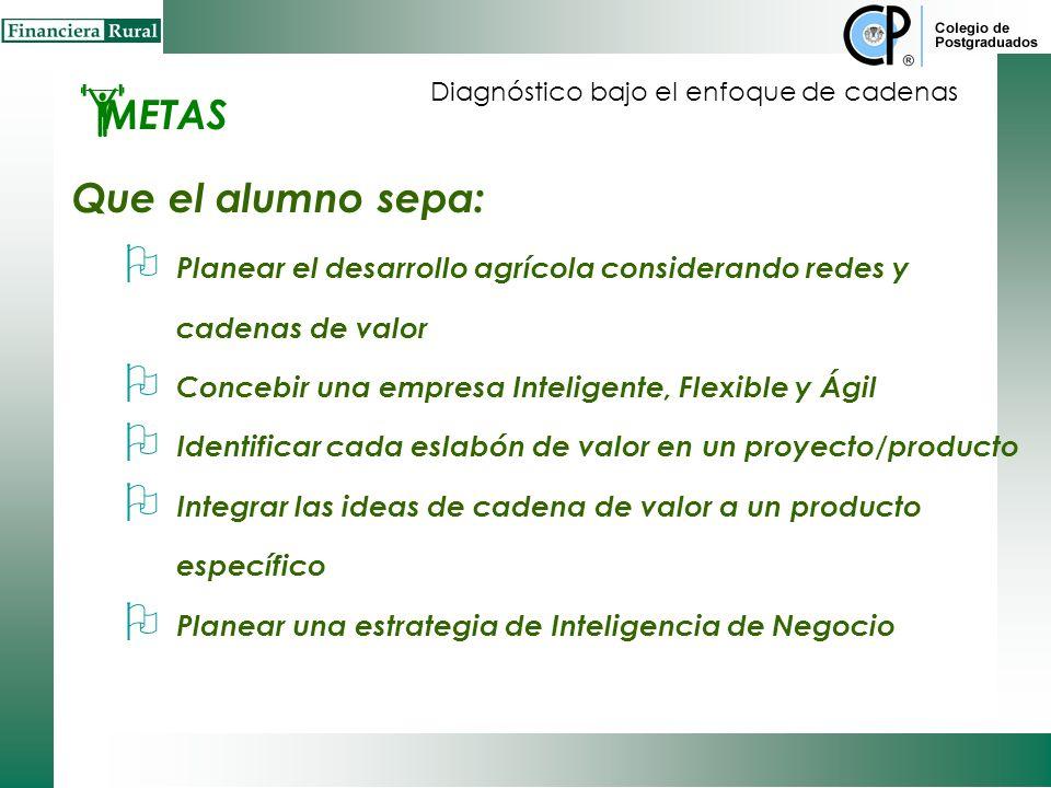 Alcances Comprender una empresa IFA (Inteligente, Flexible y Ágil) Planear las actividades de integración en la cadena de valor para el desarrollo rur