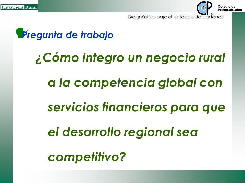 Diagnóstico bajo el enfoque de cadenas Pregunta de trabajo ¿Cómo integro un negocio rural a la competencia global con servicios financieros para que el desarrollo regional sea competitivo?