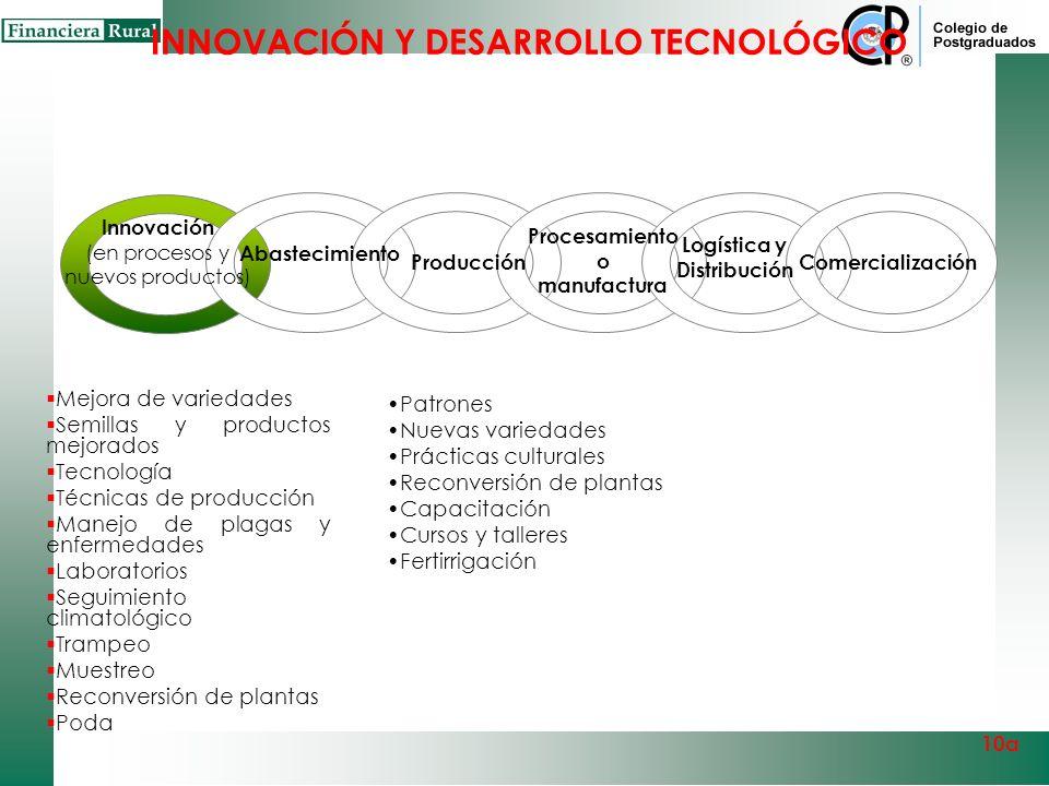 INNOVACIÓN Y DESARROLLO TECNOLÓGICO Innovación e investigación 10a Capital Intelectual Centro de innovación y Desarrollo Frutícola InvestigaciónCapaci