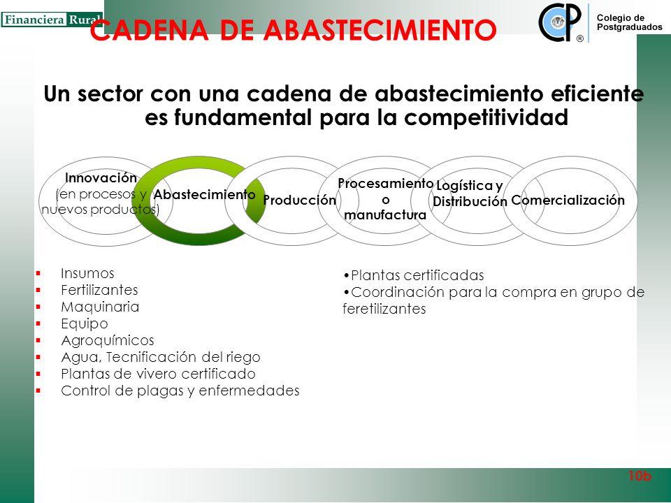INNOVACIÓN Y DESARROLLO TECNOLÓGICO INSUMOS: Planta certificada Riego tecnificado Agro insumos 10b Capital Organizacional Coordinación compras y negoc