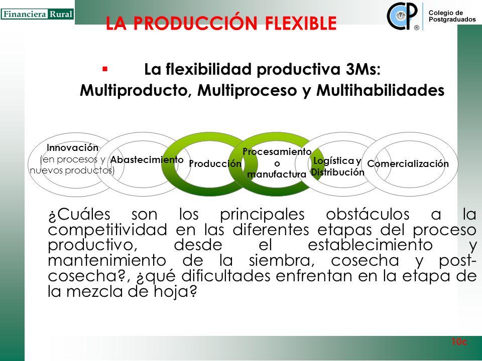 Un sector con una cadena de abastecimiento eficiente es fundamental para la competitividad Insumos Fertilizantes Maquinaria Equipo Agroquímicos Agua,