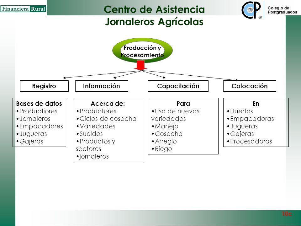 Centro de Asistencia Técnica Citrícola Producción y Procesamiento 10c Capital Empresarial Acopio y movilización Centro de Asistencia Técnica Citrícola