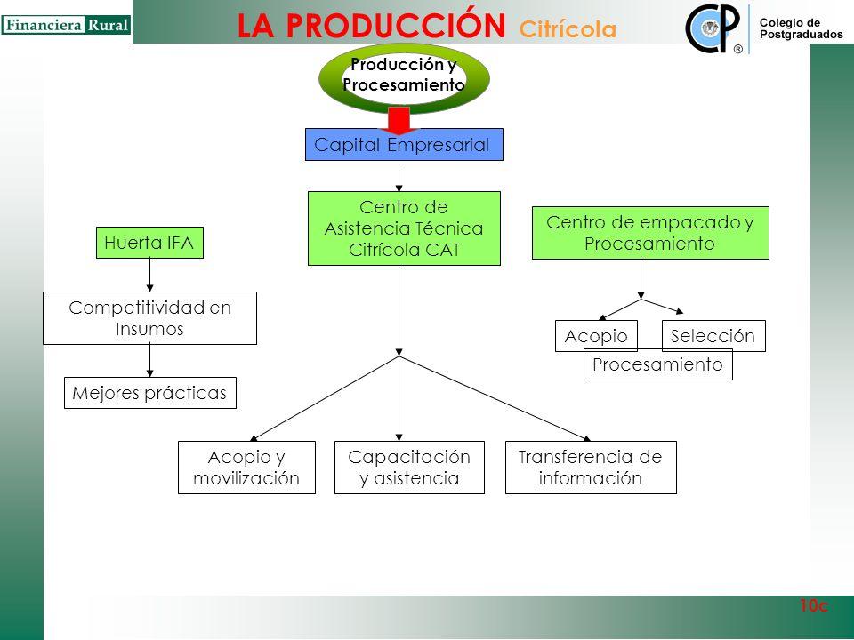 Centro de Asistencia Jornaleros Agrícolas Producción y Procesamiento 10c RegistroInformaciónCapacitación Bases de datos Productiores Jornaleros Empaca