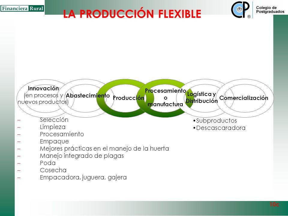 LA PRODUCCIÓN FLEXIBLE Citrícola Procesamiento o manufactura Producción 10c Huerta Citrícola Reconversión de huerta Manejo Poscosecha Mejores práctica