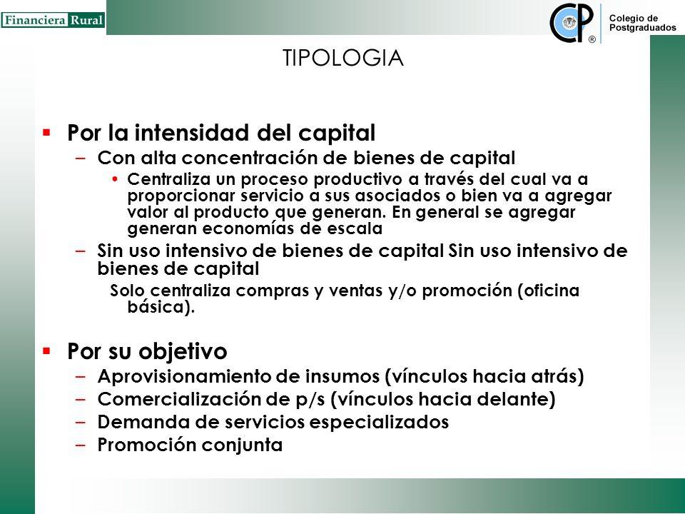 TIPOLOGIA Por su estructura – Redes horizontales Es la alianza entre grupo de empresas que ofrecen el mismo producto o servicio las cuales cooperan en