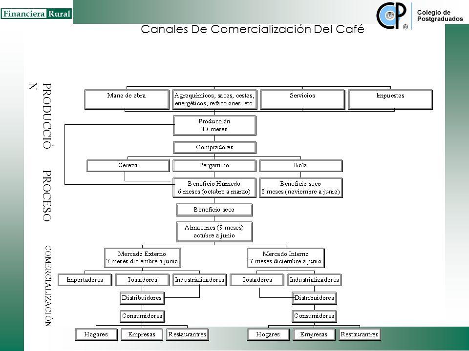 Canal de Comercialización (Carne de Caprino – Mercado Nacional) Fuente: FIRA