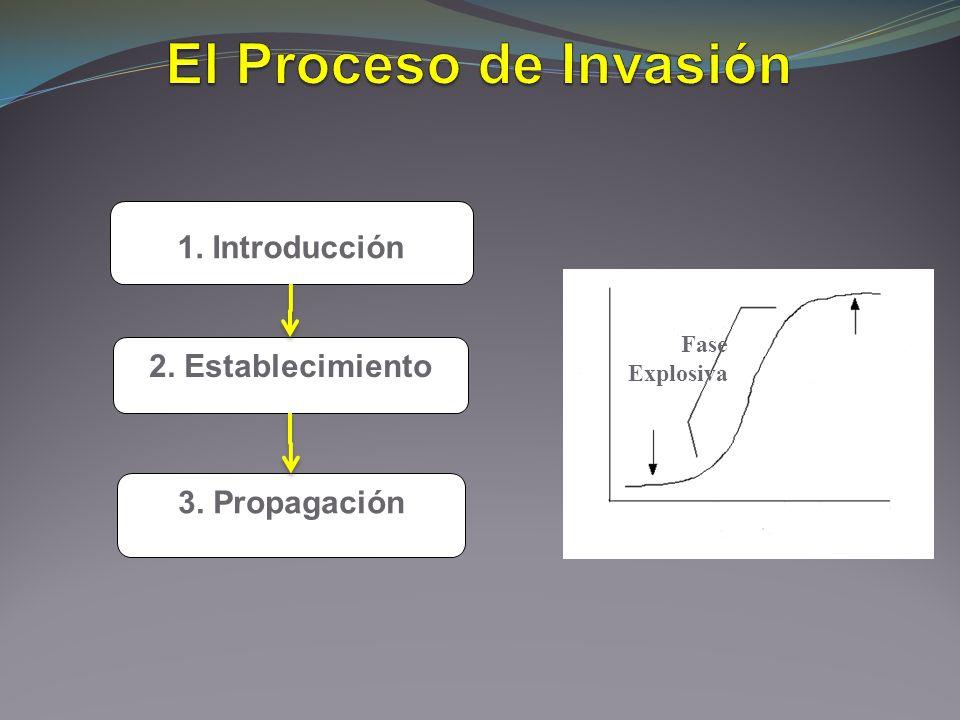 1. Introducción 2. Establecimiento 3. Propagación Fase Explosiva