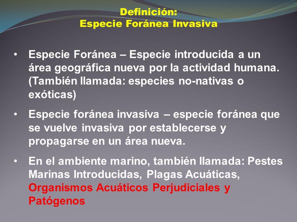 Especie Foránea – Especie introducida a un área geográfica nueva por la actividad humana. (También llamada: especies no-nativas o exóticas) Especie fo
