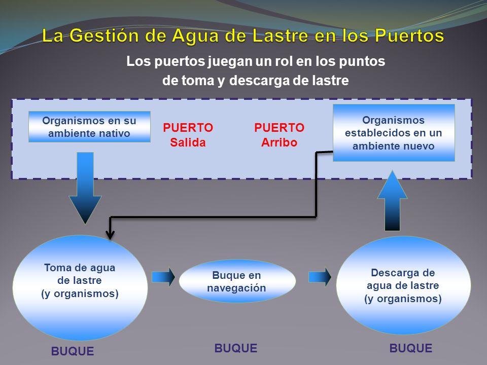 Organismos en su ambiente nativo Toma de agua de lastre (y organismos) Buque en navegación Organismos establecidos en un ambiente nuevo Descarga de ag