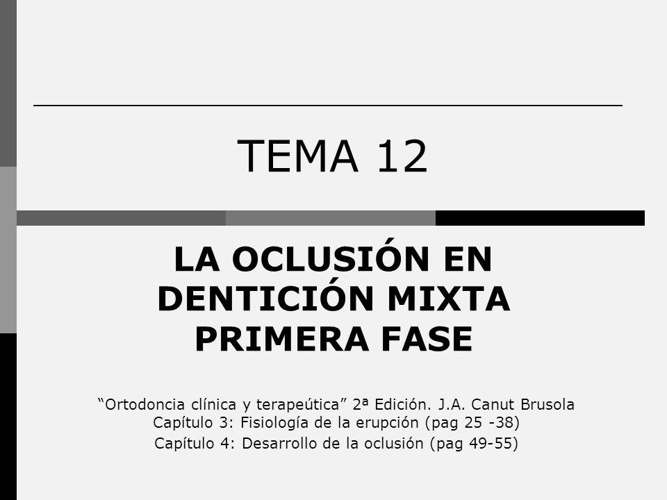 TEMA 12 LA OCLUSIÓN EN DENTICIÓN MIXTA PRIMERA FASE Ortodoncia clínica y terapeútica 2ª Edición. J.A. Canut Brusola Capítulo 3: Fisiología de la erupc