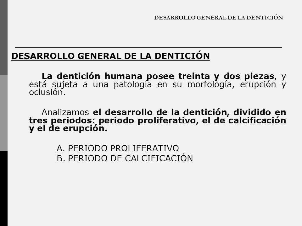 DESARROLLO GENERAL DE LA DENTICIÓN La dentición humana posee treinta y dos piezas, y está sujeta a una patología en su morfología, erupción y oclusión