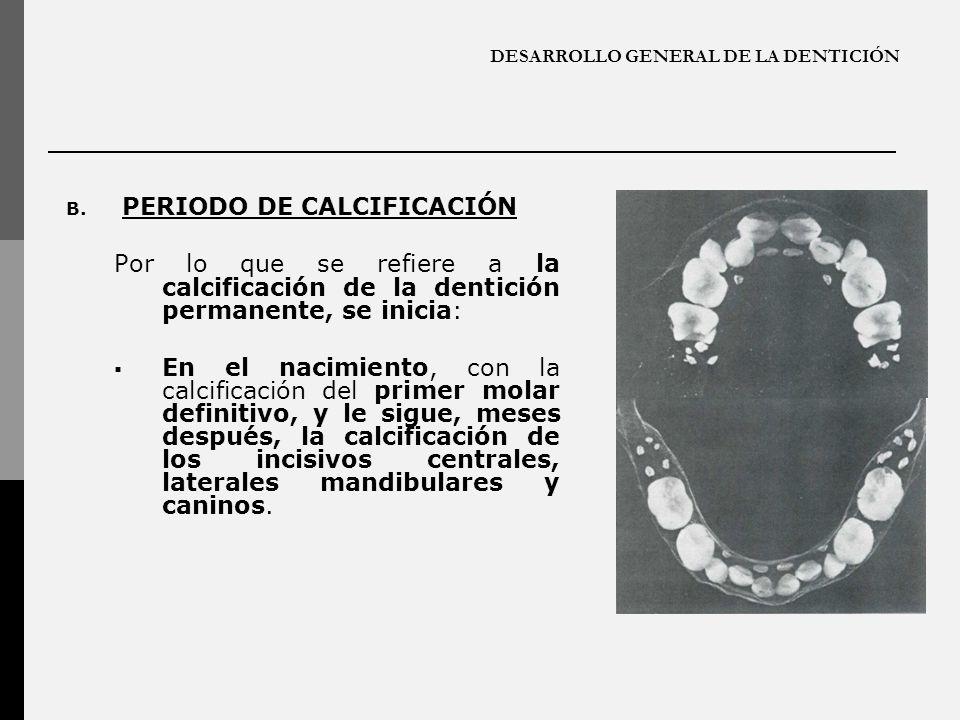 DESARROLLO GENERAL DE LA DENTICIÓN B. PERIODO DE CALCIFICACIÓN Por lo que se refiere a la calcificación de la dentición permanente, se inicia: En el n