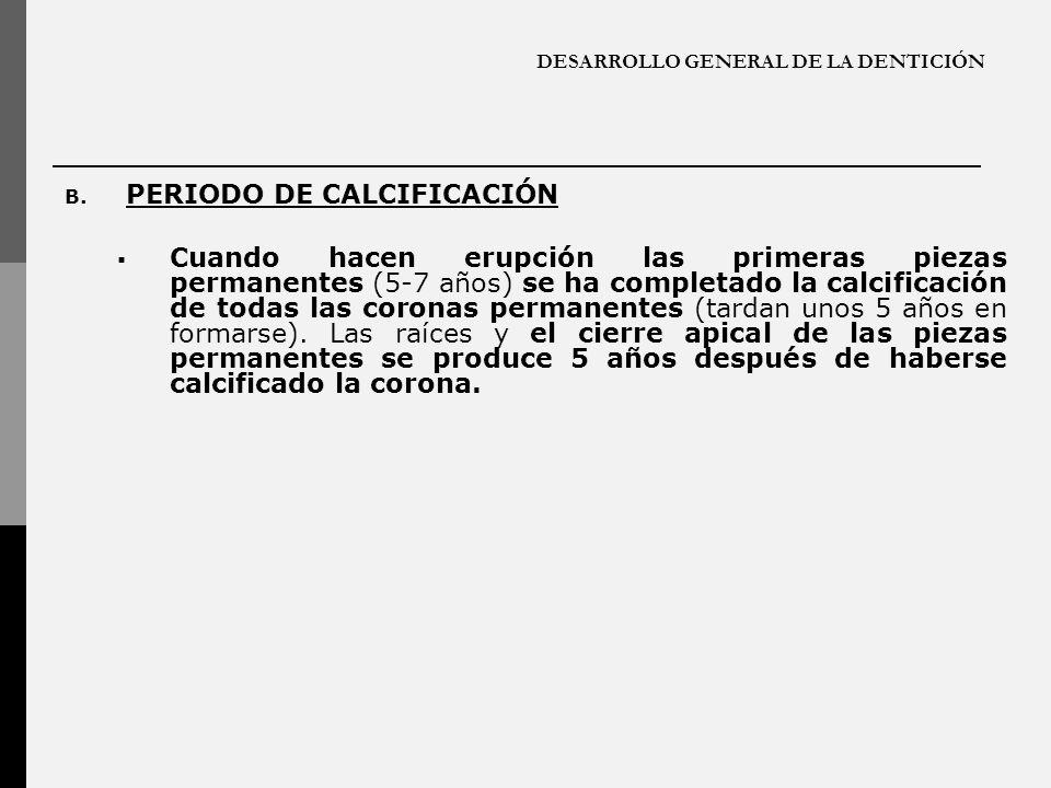 DESARROLLO GENERAL DE LA DENTICIÓN B. PERIODO DE CALCIFICACIÓN Cuando hacen erupción las primeras piezas permanentes (5-7 años) se ha completado la ca