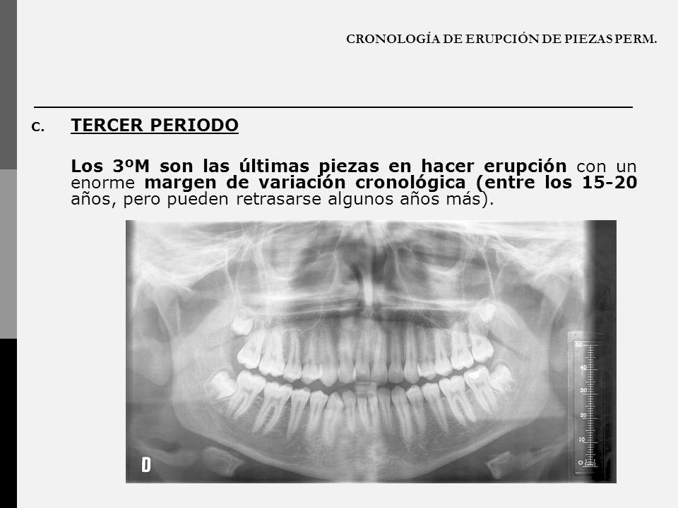 CRONOLOGÍA DE ERUPCIÓN DE PIEZAS PERM.C.