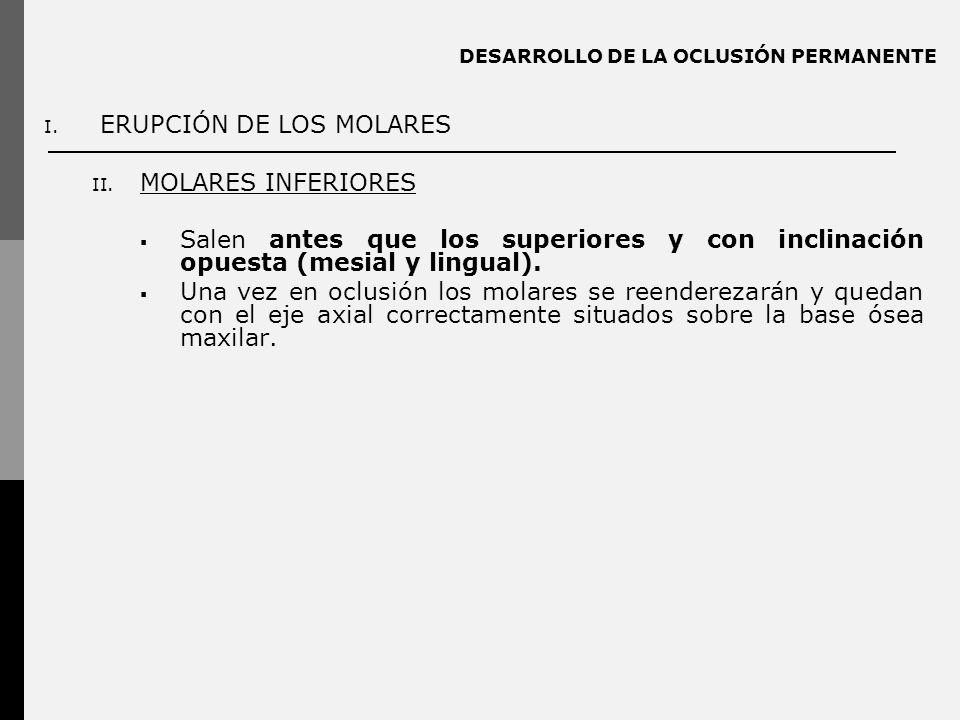DESARROLLO DE LA OCLUSIÓN PERMANENTE I. ERUPCIÓN DE LOS MOLARES II. MOLARES INFERIORES Salen antes que los superiores y con inclinación opuesta (mesia