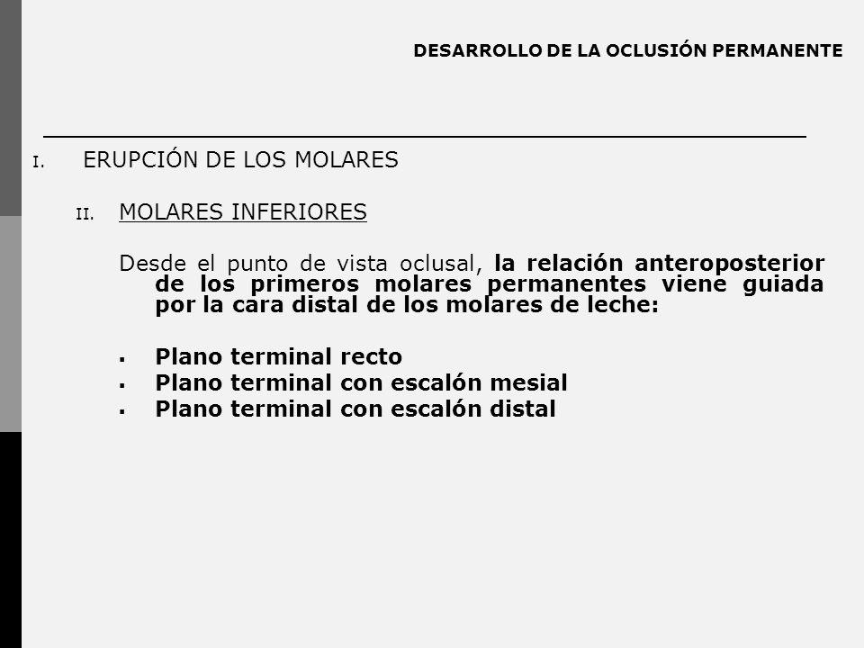 DESARROLLO DE LA OCLUSIÓN PERMANENTE I. ERUPCIÓN DE LOS MOLARES II. MOLARES INFERIORES Desde el punto de vista oclusal, la relación anteroposterior de