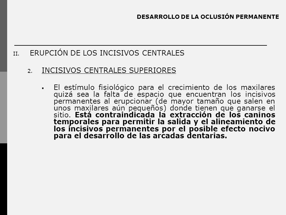 DESARROLLO DE LA OCLUSIÓN PERMANENTE II. ERUPCIÓN DE LOS INCISIVOS CENTRALES 2. INCISIVOS CENTRALES SUPERIORES El estímulo fisiológico para el crecimi